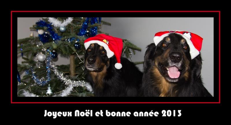 Voeux 2013 Wish110