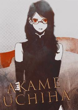 Naruto - Yume no sekai Akame_11