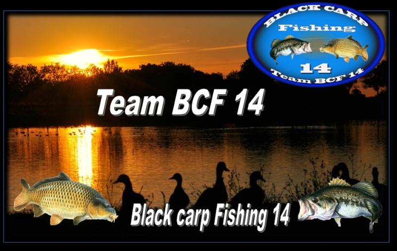 BLACK CARP FISHING 14