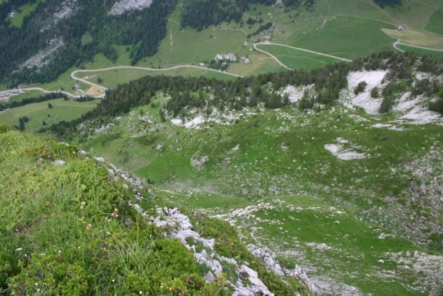 Haute-Savoie : Un arrêté de protection de Biotope à l'initiative des chasseurs  5709ab10