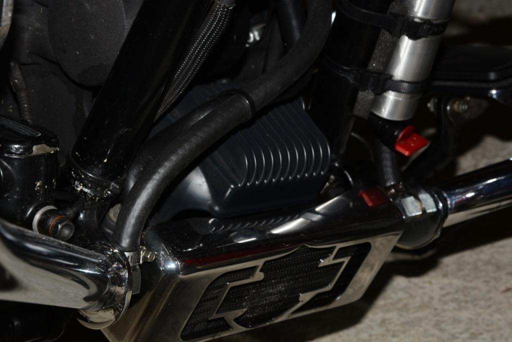 Qui roule avec un radiateur d'huile ? - Page 2 Dsc_0311