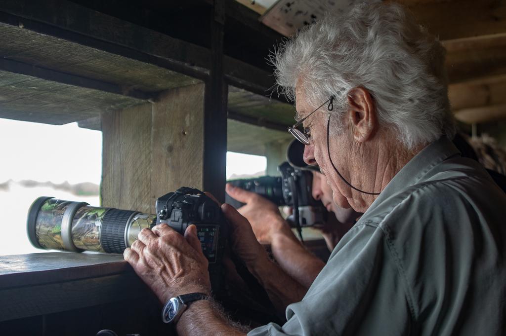Sortie à la réserve ornithologique du Teich - 24 août 2018 - Page 6 _img7513