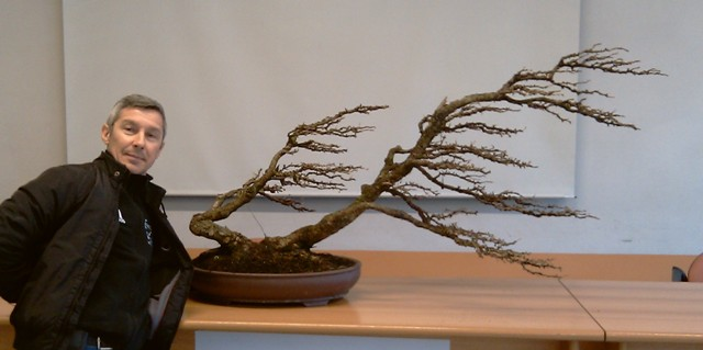 FUKINAGASHI (Battuto/spazzato dal vento) Copia_10