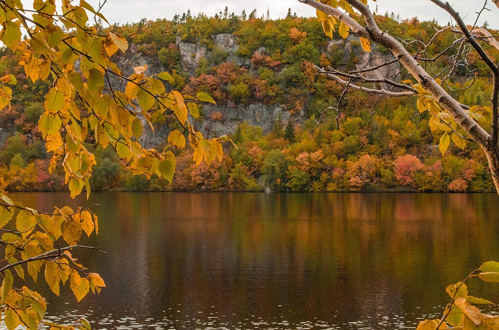 Les premières couleurs de l'automne  3104pe10