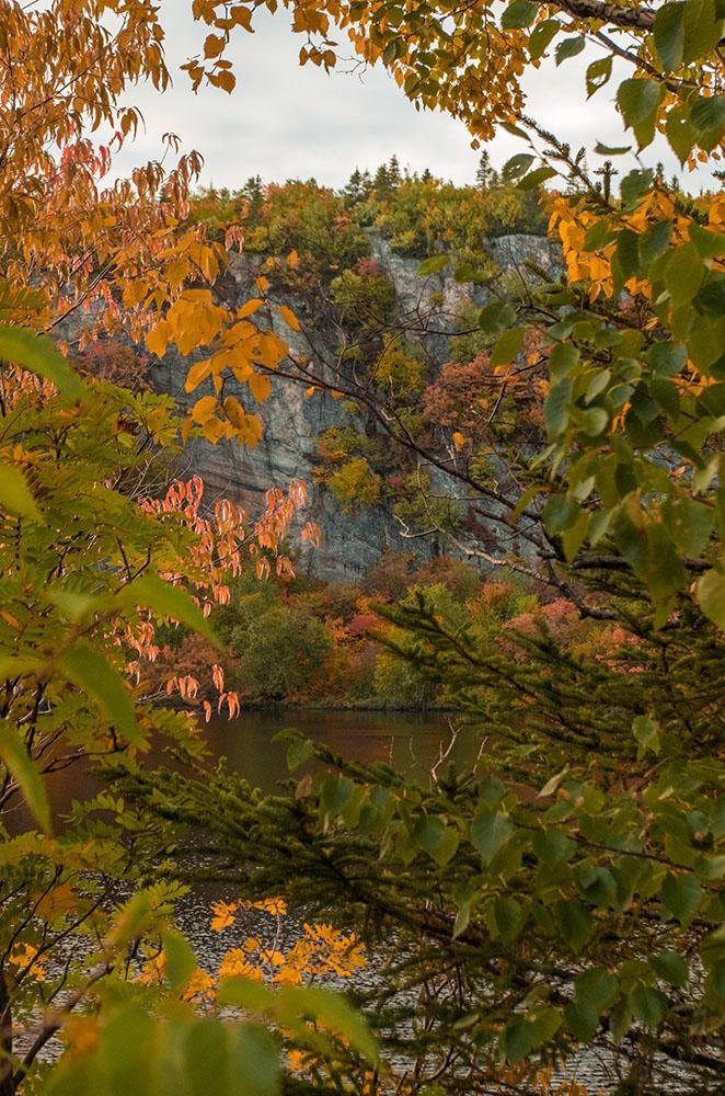 Les premières couleurs de l'automne  3115pe10