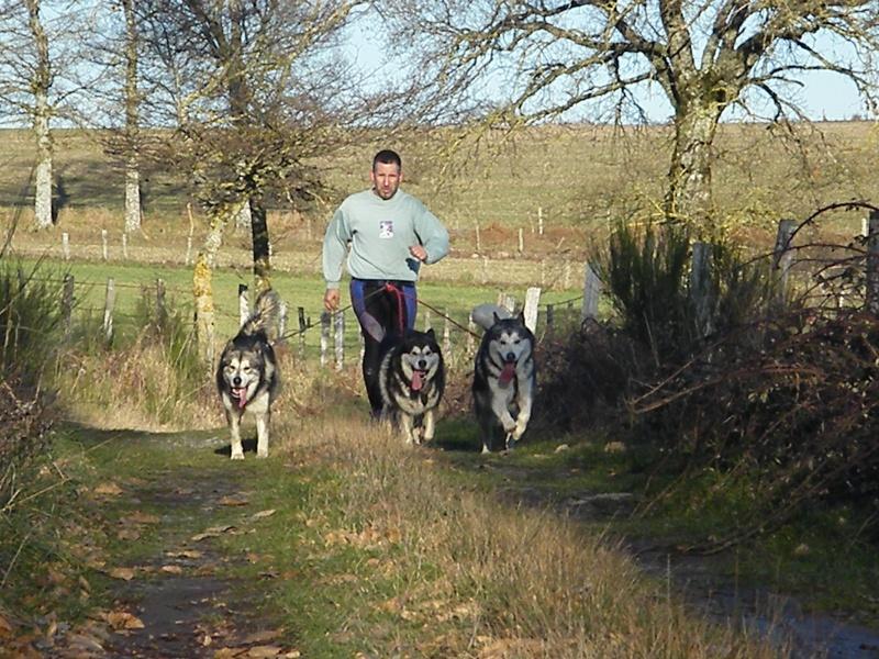 Nos loups grandissent, postez nous vos photos - Page 8 Dscf2710