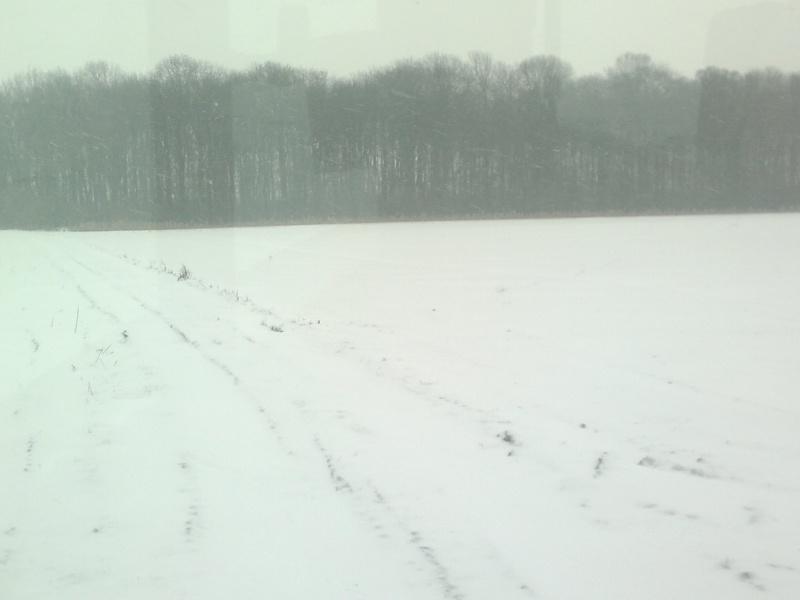 la neige est-elle arrivée chez vous ?  - Page 10 20012010