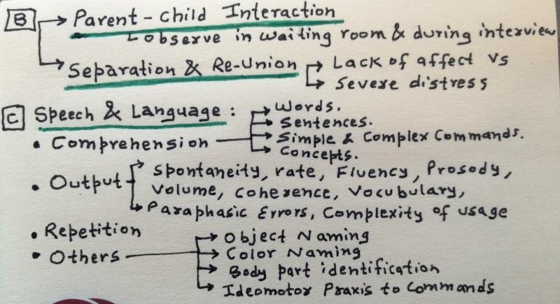 Child & Adolescent Neuropsychiatric Mental Status Exam Photo_11