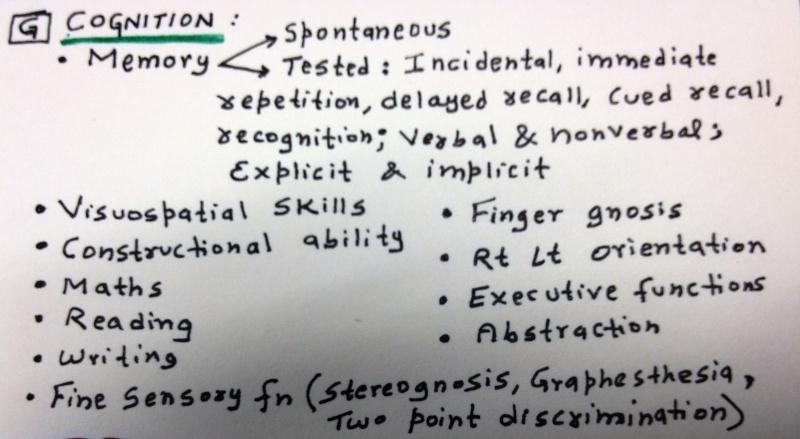 Child & Adolescent Neuropsychiatric Mental Status Exam Photo_15