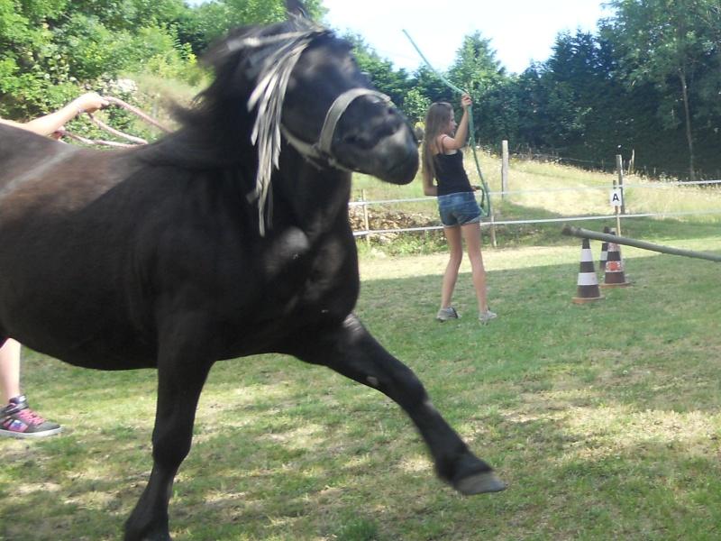 Concours photos, Quand nos chevaux font les fous : VOTES FERMES --> Gagnante COLOMBE Manon-11