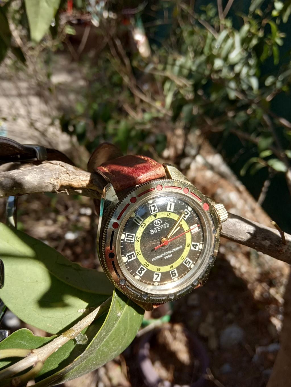 [Vends] Vostok Amphibia manuelle rare révisé 50 €  Img_2011