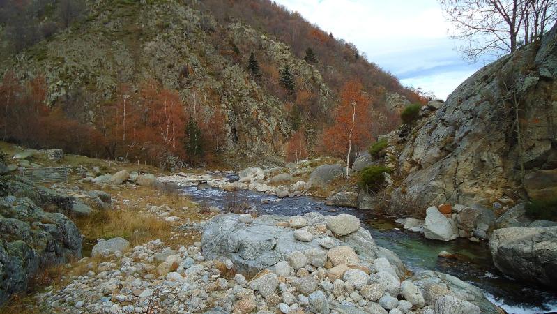couleurs d'automne Dsc02712