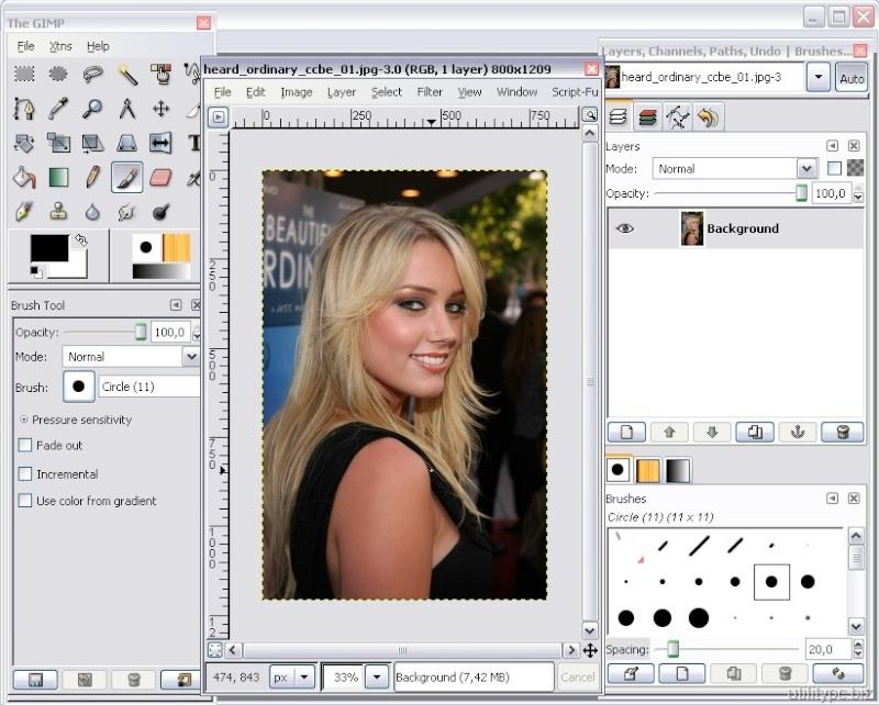 Gimpshop 2.2.8 -  Πρόγραμμα επεξεργασίας εικόνας που είναι παρόμοιο με το δημοφιλές πρόγραμμα Adobe Photoshop Gimpsh11
