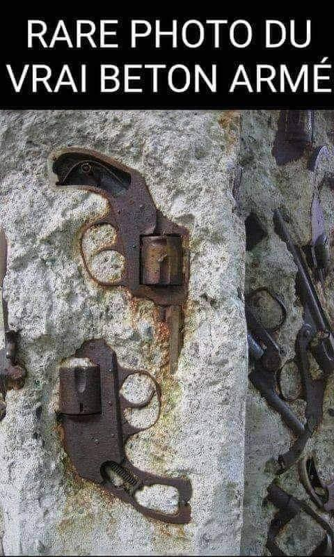 L'origine du béton armé 24267910