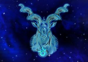 Signe astrologique : tout savoir Capric10