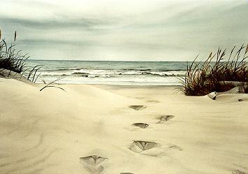 Des pas sur le sable Footpr10