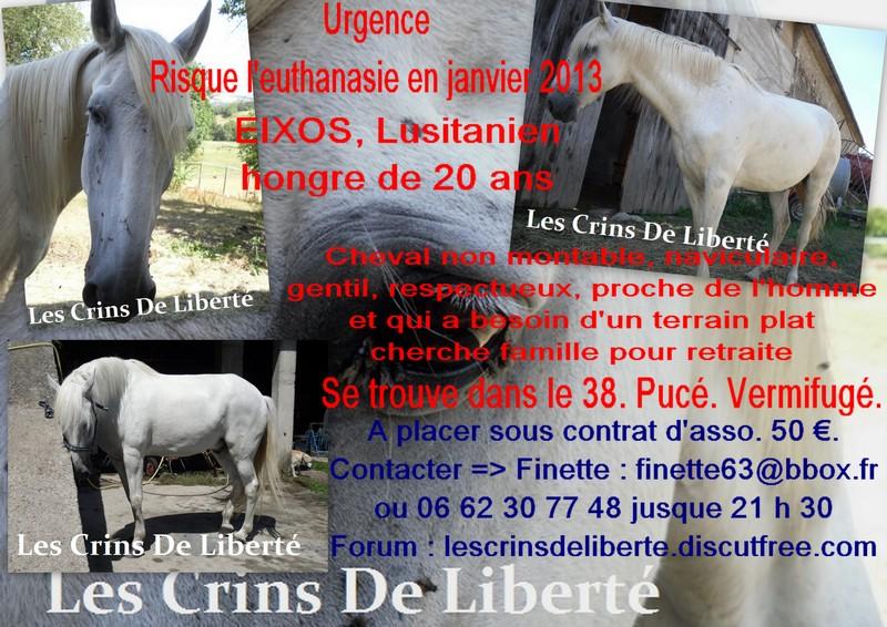 EIXOS, PAPILLON & Chloé T  (2013) - Page 2 Affich11