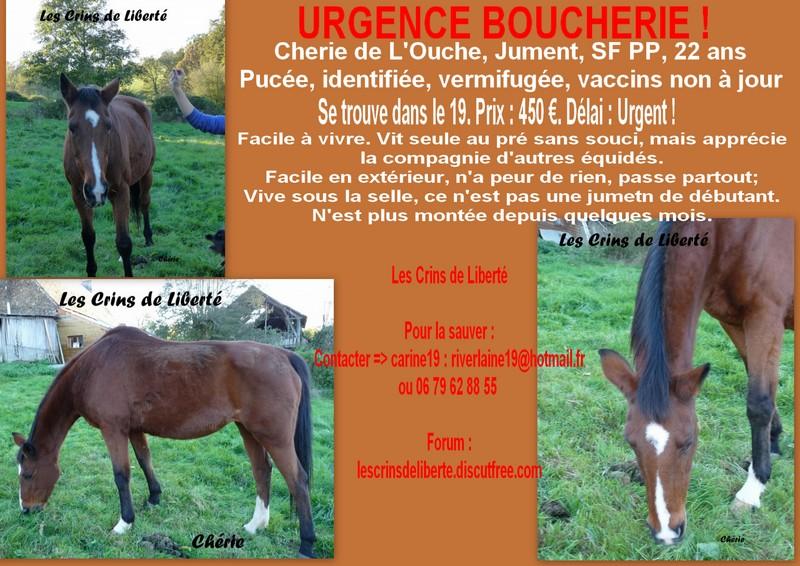 (Dept19) CHERIE DE L'OUCHE, SF PP, partie rejoindre les étoiles !!! Affich21