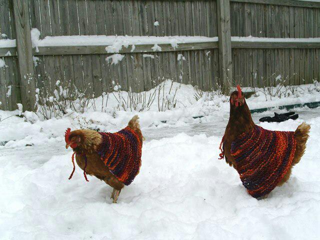 tricots - a vos tricots  Tricot10