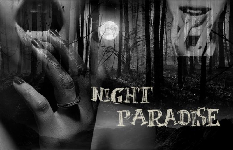 NightParadise