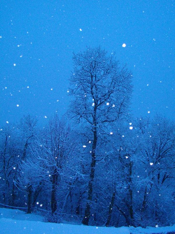 la neige  Montan10