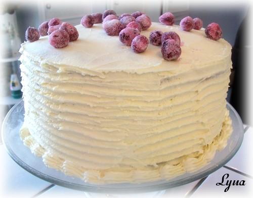 Gâteau 'Neige' aux canneberges, glaçage chocolat blanc Gaetau10