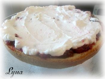Gâteau 'Neige' aux canneberges, glaçage chocolat blanc Gateau11