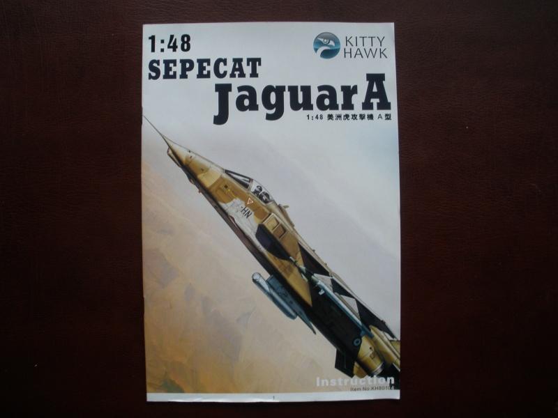 Revue de kit SEPECAT Jaguar-A 1/48 KittyHawk P1160210