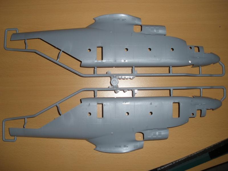 Une Baleine dans les Airs!!! P2080114