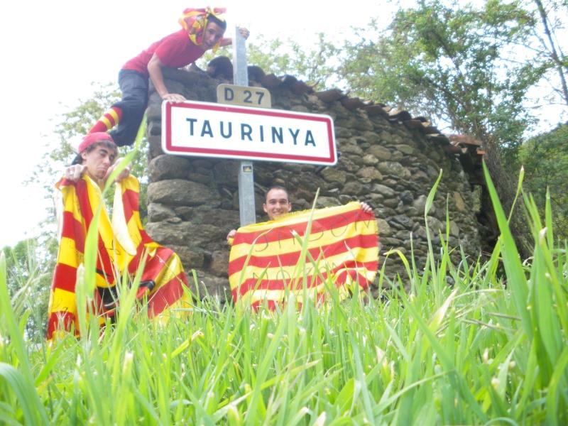 Taurinya Taurin10