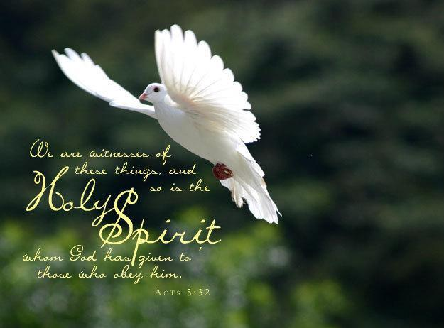 50 Things You May Not Know About God's Spirit 46081_10
