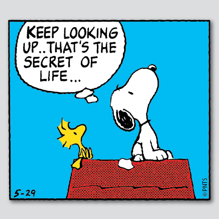 Keep Looking Up... 53071610