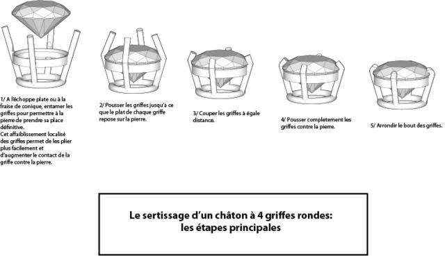 Serti griffe 2 Chaton11