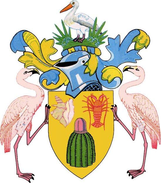 Le cactus Turque10