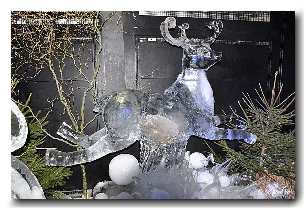 Sculptures de glace Glace_11