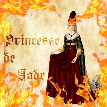 Ce que vous ne verrez plus que chez les autres, car tout a brûlé... 1410