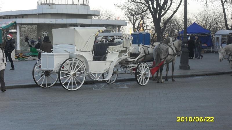 Новый год в Одессе Sdc10027