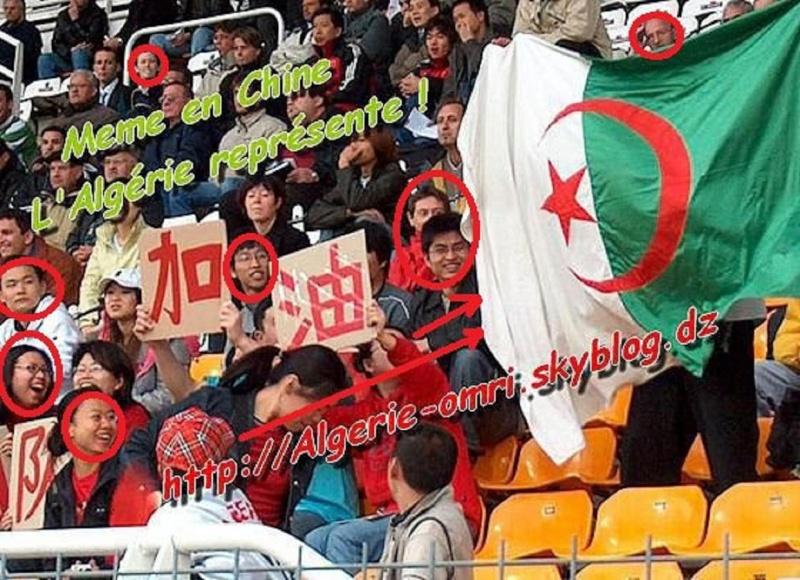 Drapeau Algérien 16742110