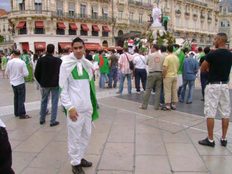 Drapeau Algérien 22483110
