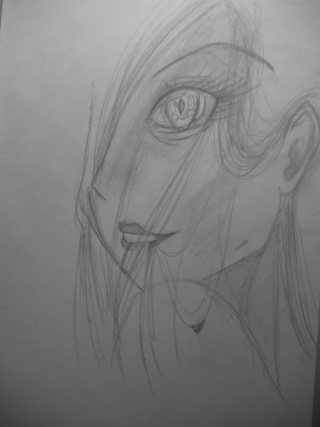 Galerie de dessins d'Erza Scarlet  Sany0016