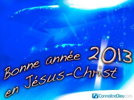 Bonne fin d'année 2012 et bonne année 2013 / Joyeuses fêtes à tous! Cv5_3815