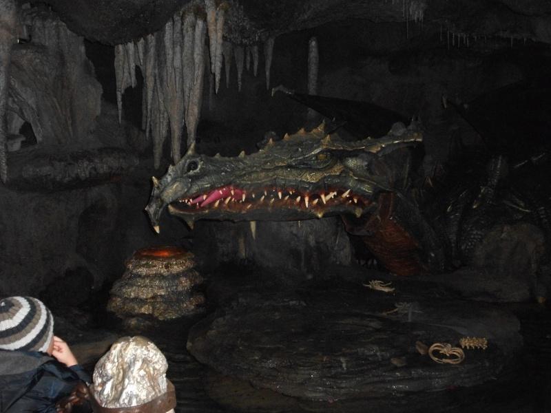 Séjour à Disneyland du 27 au 29 décembre 2012 !  Dscf0420