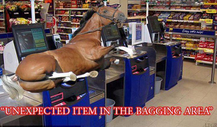 Tesco's Horse Burgers 48055510