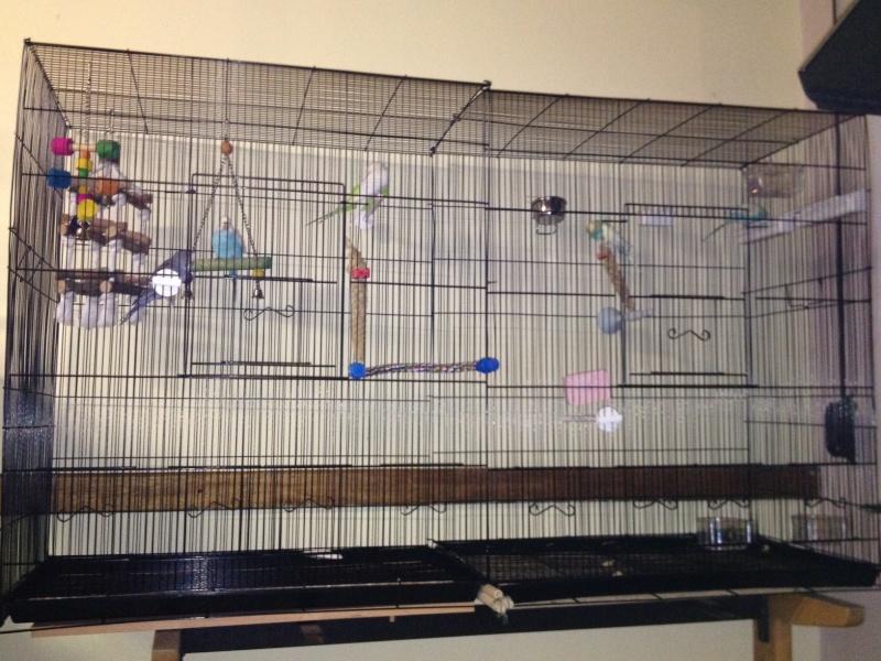 Vos avis sur ces cages Cage_f12