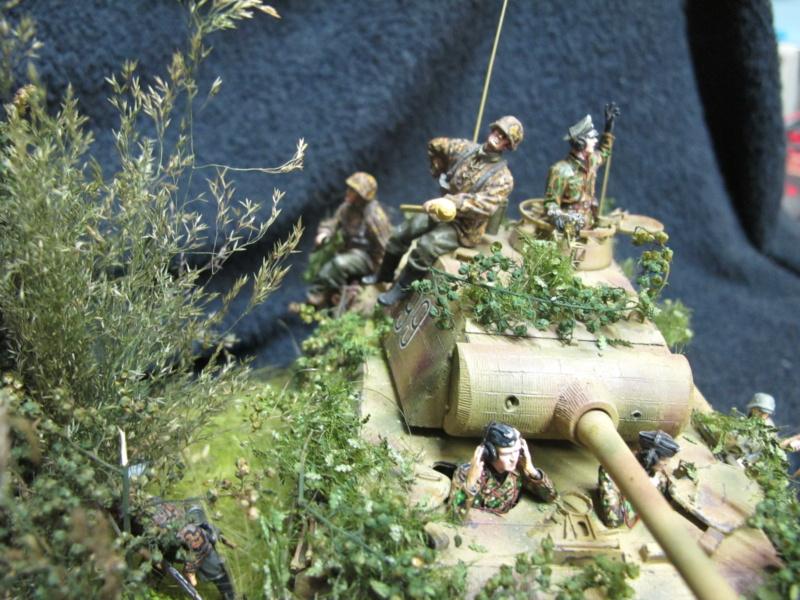 "Panther in Normandy (Marini Claudio)""TERMINATO"" - Pagina 4 Img_1300"