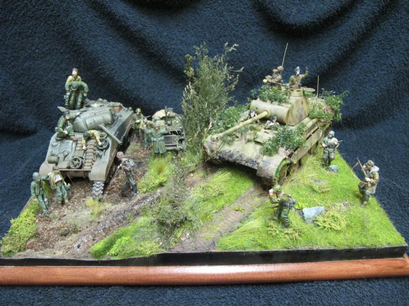 "Panther in Normandy (Marini Claudio)""TERMINATO"" - Pagina 4 Img_1301"