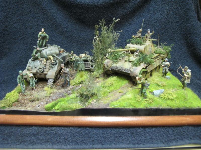 "Panther in Normandy (Marini Claudio)""TERMINATO"" - Pagina 4 Img_1572"