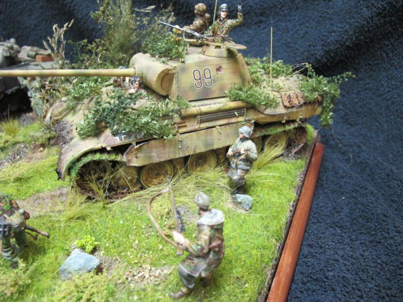 "Panther in Normandy (Marini Claudio)""TERMINATO"" - Pagina 4 Img_1578"