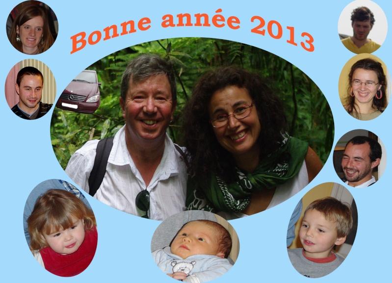 meilleurs voeux pour 2013 Voeux-10