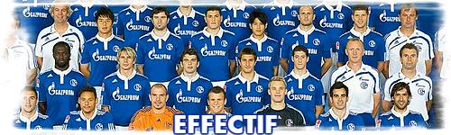 Effectif Effect29